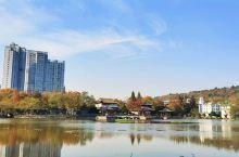 武汉的莲花湖公园