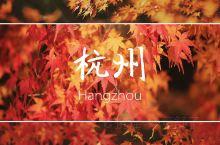 最美秋天拍照地 | 枫叶红了,深秋的杭州成了小京都  杭州西湖边有个地方,平日里游客不多,但一到秋天