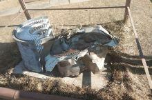 在蒙古国发现飞机发动机残骸,谁知道这个残骸是谁座过的飞机吗?