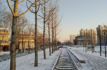 雪后的早晨.寿光.铁路公园 寿光·潍坊