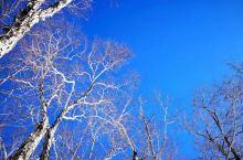 安图·延边 1.21长白山天池行。天蓝雪白,登顶后的冷,冷得刺骨,但景色美得惊人,一路的冰天雪地都不