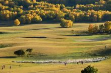 乌兰布统。铺天盖地的树,令人惊艳的黄,炫目耀眼的阳光,叹为观止的大气。能够拥有这么壮丽山河多么幸福。