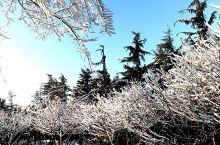 风雪交加,高速封路还是阻挡不了我到淄博
