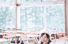 北海道星野森林餐厅,喜提胡歌霍建华同款  月初的第八次 #日本[地点]#之行 第一次去 #北海道