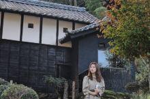 奇遇人生日式庭院民宿,体验温暖的乡间生活   月初去日本,在丰田的忍者小屋住了两天,又哭又笑的看完奇