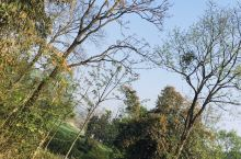 蓝蓝的天空 青青的草地 大自然真的令人赏心悦目