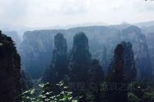 【景点攻略】  门票价格:天门山和武陵源是两个风景区,在武陵源内游玩可以住在农家里面(提前联系好哪家