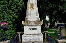 贝多芬墓地是一座锥形白色大理石墓碑,三面则有三棵苍翠松拍环绕着,正面底座用黑色的字体刻上: 贝多芬1