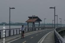 阳澄湖半岛骑行 #苏州人文历史地理美食#11  上周骑行阳澄湖美人腿半岛,累。这周骑行阳澄湖半岛。就