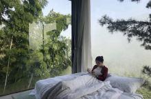 云逸· 远山 坐落在浙江丽水-遂昌海拔800米的车前村无名山谷处,风景秀丽,环境清幽,江南竹海,倚窗