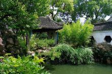 六月初到苏州匆忙一日,走马观花,逛了厅榭精美,花木繁茂的拙政园,湖石假山错落有致的狮子林,看了寒山寺