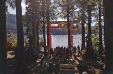 1.21日报了个富士山一日游,9人小团。老天比较帮忙,听说前几天下大雪,这天天特别好,箱根神社和大部