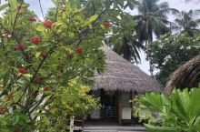 库拉玛提岛的豪华沙屋,面积不小,布置不错,门口就是沙滩,景色不错。