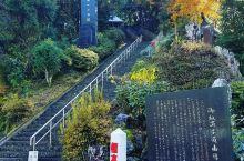 挑战日本第一的石阶(释迦院御坂步行道) 这个位于熊本的石阶以其3,333阶的长度荣登日本第一的宝座,