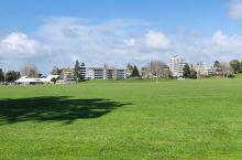 怀卡托大学运动场