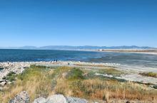 工作之余的小乐趣。 大盐湖,没有勇气下去走,哈哈哈~ 盐湖城这座城市虽然干燥,但是不得不说,有极其多
