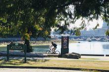 沿着Coal Harbour(高豪港),就从Stanley公园走到了Canada Place。水波永