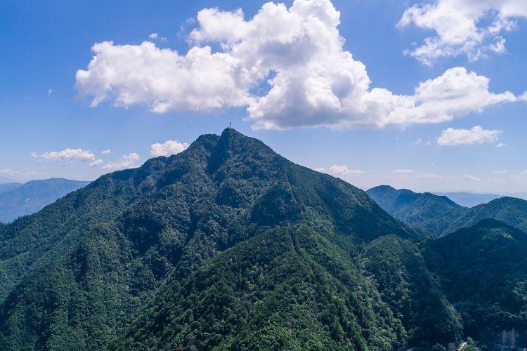 巾子峰森林公園4