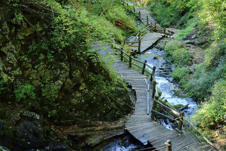 펑황산 국가삼림공원1