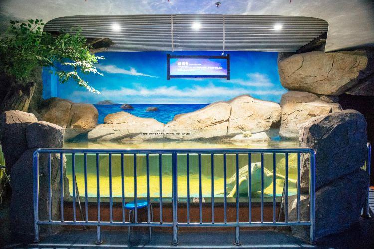 Liaocheng Underwater World3