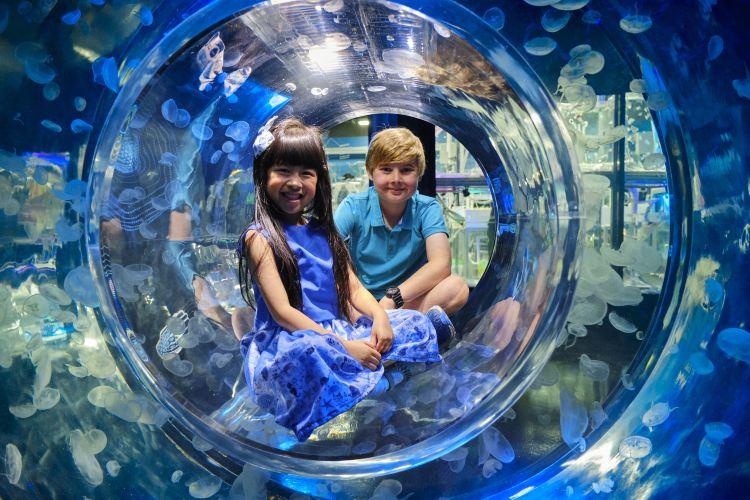 Melbourne Aquarium3