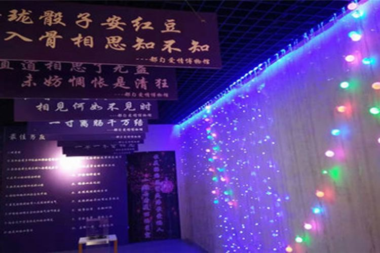 Douyun'aiqing Museum4