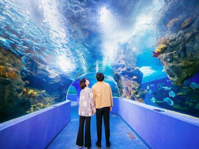 Liaocheng Underwater World