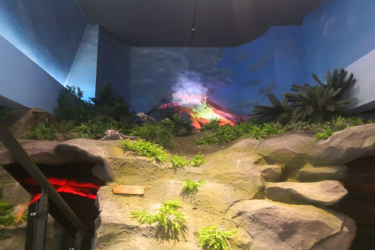 奇幻侏羅紀體驗館3
