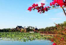 东坡故地,儋州两日游
