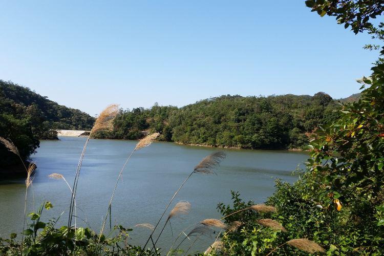 天馬山生態旅遊區1