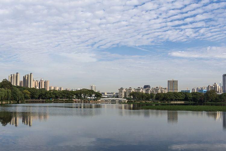 Wuhan Zoo2