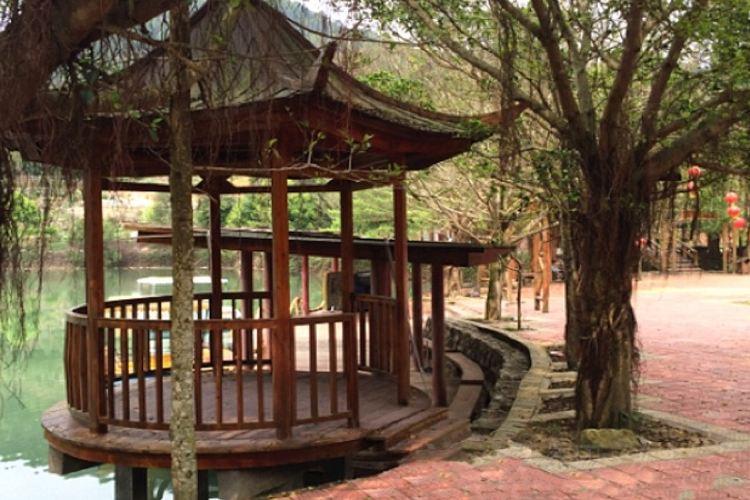 Fengxiangxia Original Ecological Tourist Area4
