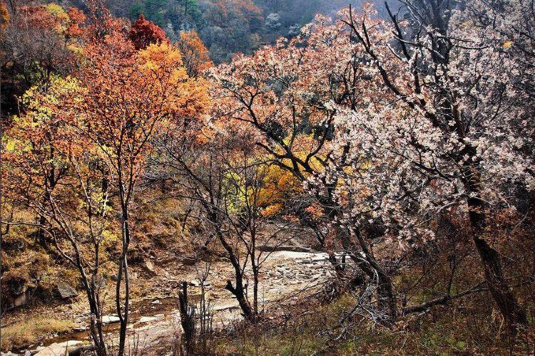 Shenyingwang Shengtai Lvyou Dujia Sceneic Area1