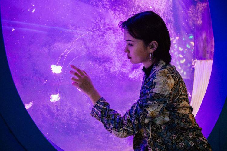 Liaocheng Underwater World1