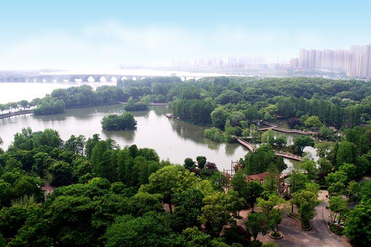 Wuhan Zoo4