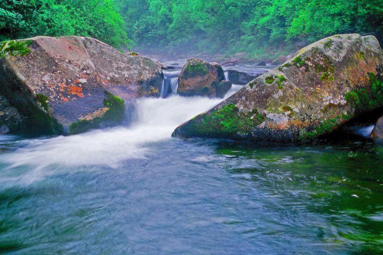 펑황산 국가삼림공원2