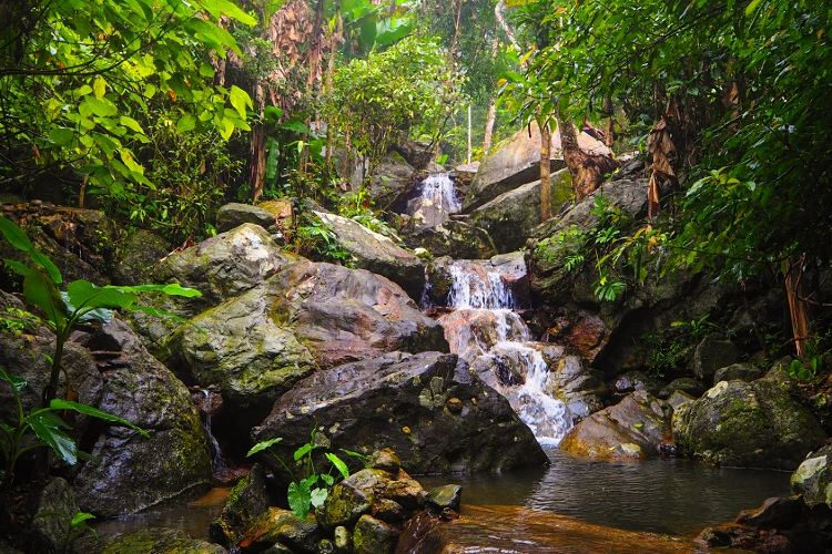 Hainan Baihualing Rainforest Cultural Tourism Zone2