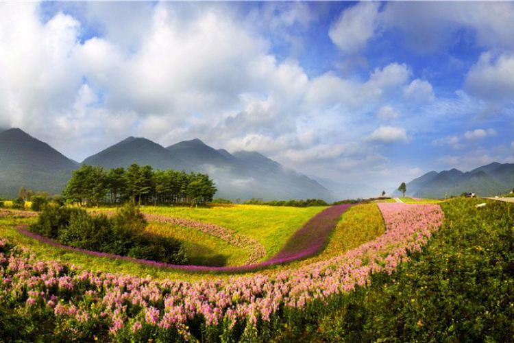 Hongchiba National Forest Park1
