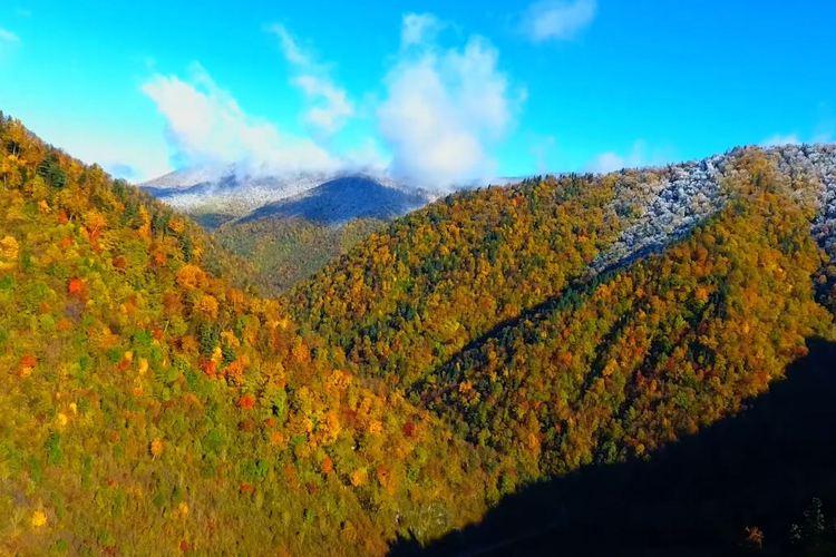펑황산 국가삼림공원3