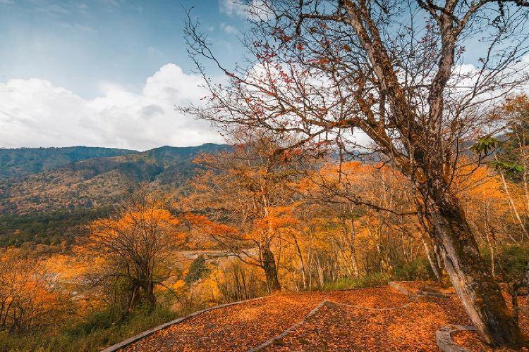 Laba River Park, Erlangshan National Park3