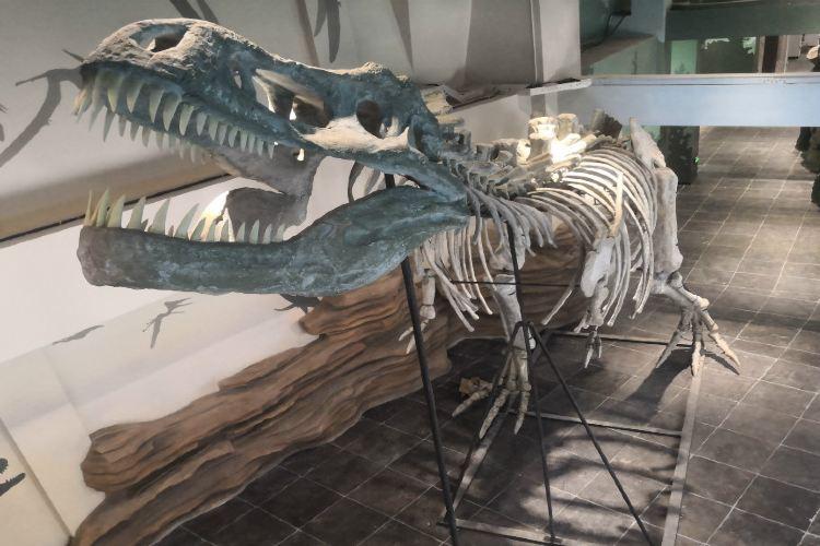 奇幻侏羅紀體驗館2