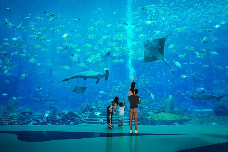 亞特蘭蒂斯失落的空間水族館