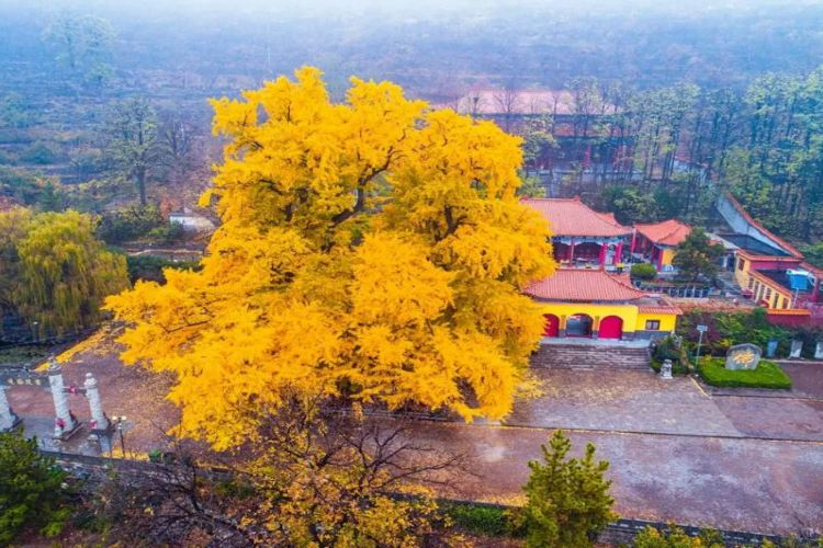 Chengding Mountain1