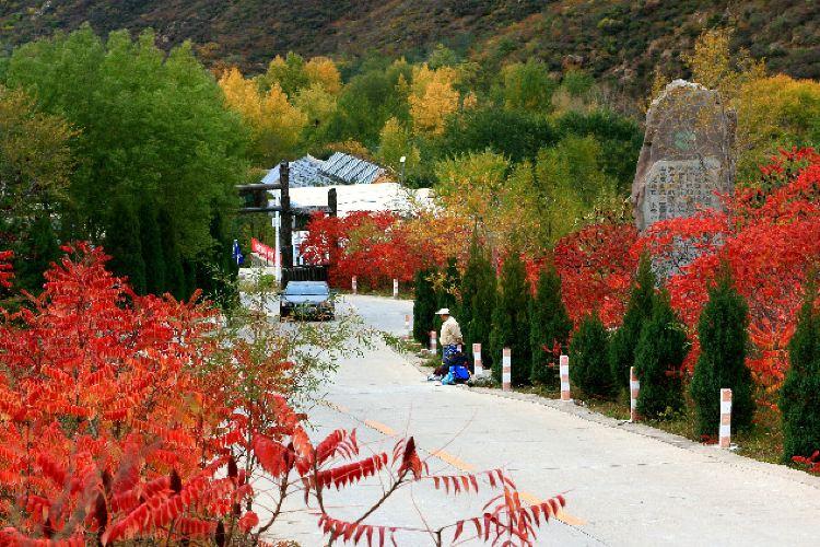 Yesanpo White Grass Scenic Area1