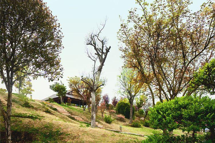 Wan Bird Park4