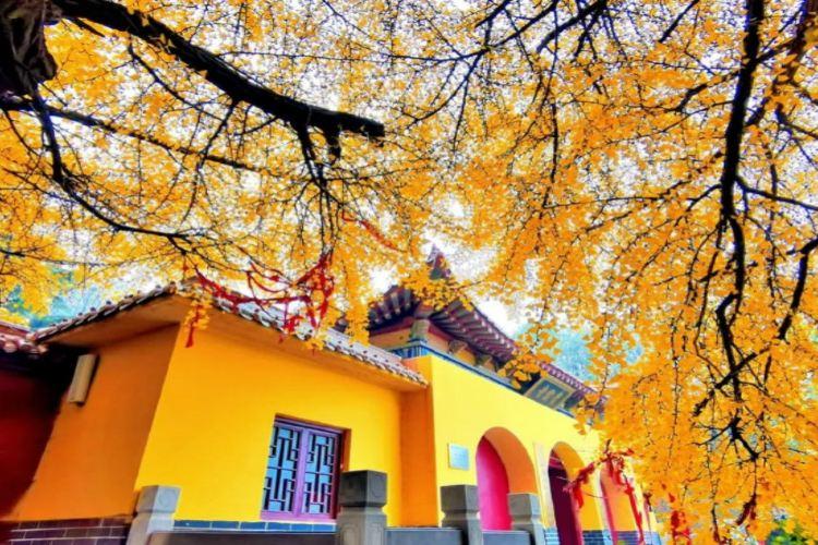 Chengding Mountain4