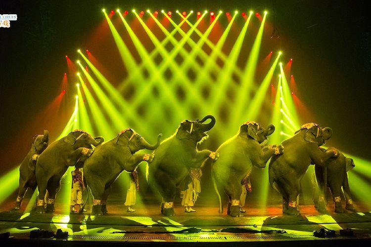 Chimelong International Circus1