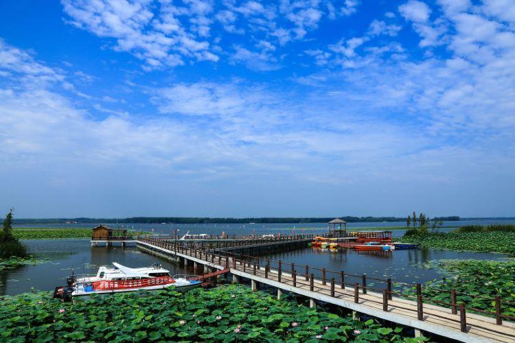 Baoyinghu National Wetland Park2