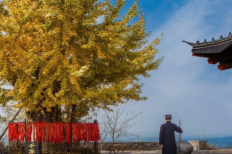 白兆山李白文化旅遊區3