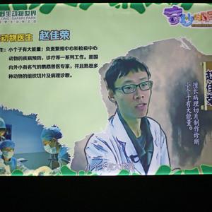 番禺区游记图文-长隆野生动物世界的奇妙新体验